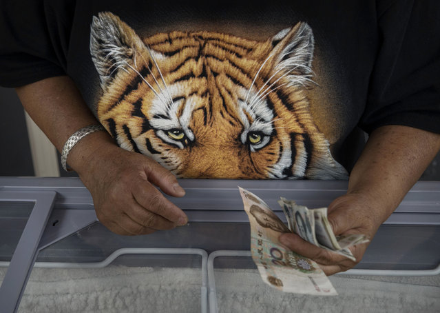 A Chinese vendor wears a shirt as she sells ice cream at the Heilongjiang Siberian Tiger Park on August 16, 2017 in Harbin, northern China. (Photo by Kevin Frayer/Getty Images)
