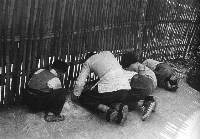 1948年5月,从篱笆缝中偷看杂技表演的一家 (In May 1948 a peep from the fence cracks acrobatics)