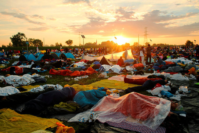 Pilgrims sleep as sun rises at the Campus Misericordiae during World Youth Day in Brzegi near Krakow, Poland July 31, 2016. (Photo by Mateusz Skwarczek/Reuters/Agencja Gazeta)