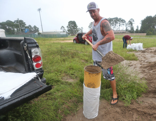 Brandon Kreglow fills bags with sand in advance of Tropical Storm Hermine Thursday, September 1, 2016, at Pete Edwards field in Panama City Beach, Fla. (Photo by Patti Blake/Naples Daily News via AP Photo)