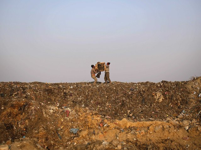 Rag pickers collect recyclable material at a garbage dump in New Delhi November 19, 2014. (Photo by Ahmad Masood/Reuters)