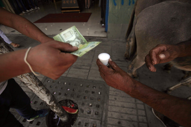 In this December 13, 2014 photo, Marco Alegria hands a customer a small cup of fresh donkey milk as the customer hands him money in the streets of Santiago, Chile. Selling donkey milk is a rare job, but a very old one. The ancient Greek physician Hippocrates recommended donkey's milk for some ailments and at least some claim that Cleopatra bathed in it for her skin. (Photo by Luis Hidalgo/AP Photo)