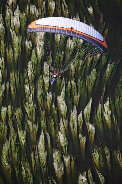 """Powered paragliding above a river"". The aquatic plants provide an unusual background as the pilot flies over the Dordogne River. Location: Meyronne, Dordogne River, Lot (46), France. (Photo and caption by Franck Simonnet/National Geographic Traveler Photo Contest)"