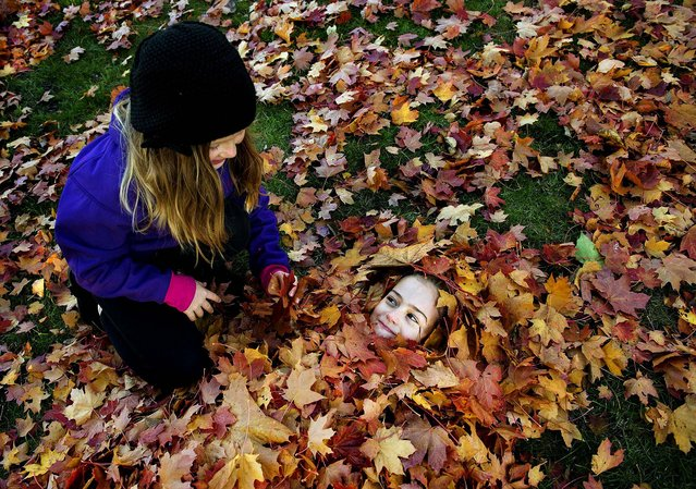 Two girls play among autumn leaves in Stockholm, October 13, 2013. (Photo by Jessica Gow/TT News Agency)