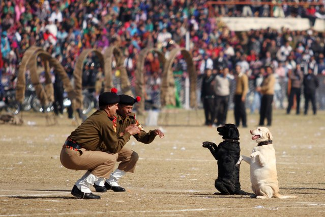 In this photograph taken on January 26, 2014, Indian Border Security Force (BSF) Dog Squad personnel take part in a march during Republic Day celebrations in Jammu. India celebrated its 65th Republic Day with a large military parade in the capital New Delhi and similar events across the country. (Photo by Alok Pathania/AFP Photo)