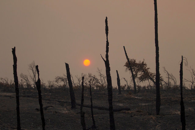 The sun sets over hills burned by the Carr Fire west of Redding, California, U.S. July 28, 2018. (Photo by Bob Strong/Reuters)