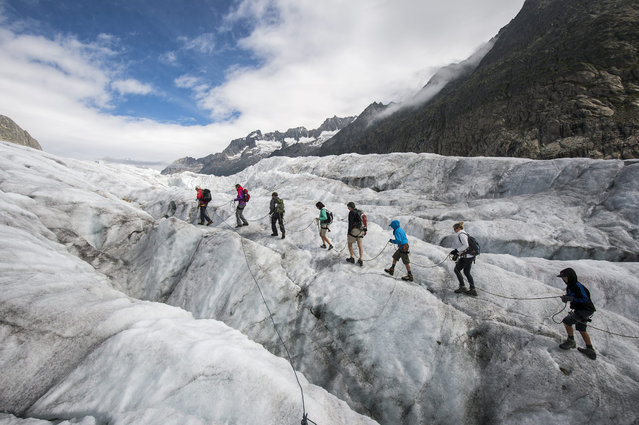 Tourists during a guided tour on the Aletsch glacier, in Fiesch, Switzerland, 28 July 2015. With 23 kilometers is the Aletsch glacier the longest glacier of Europe and belongs to the UNESCO world heritage sites. (Photo by Dominic Steinmann/EPA)