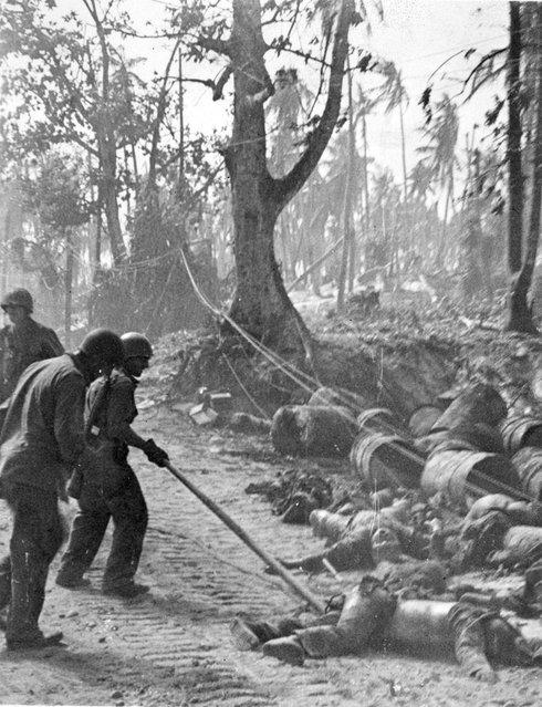 Three marines dragging Jap body along dusty road on Kwajalein