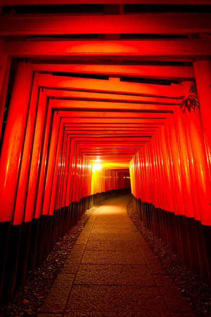 A view of the torii gates at the Fushimi Inari Shrine, in Kyoto, Japan, August 7, 2014. The Shinto shrine is one of the oldest in Japan, dating back to the 10th century. The diety of the shrine is believed to be the patron of business, and merchants and manufacturers and is popularly worshipped by many businessmen in Japan. The shrine is a popular tourist destination in Kyoto. (Photo by Everett Kennedy Brown/EPA)