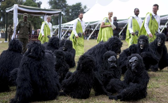 """Guests dressed in traditional attire walk around gorilla mascots before the start of the annual mountain gorilla naming ceremony, also known as """"Kwita Izina"""", in Kinigi town, Rwanda, September 5, 2015. (Photo by Edward Echwalu/Reuters)"""