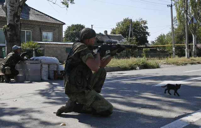 A pro-Russian separatist observes the area through the scope of his rifle at a check point on the outskirts of Donetsk September 6, 2014. An uneasy calm prevailed in eastern Ukraine on Saturday after Ukrainian forces and pro-Russian separatists signed a ceasefire as part of a drive to end a war that has triggered a deep crisis in relations between Russia and the West. (Photo by Maxim Shemetov/Reuters)