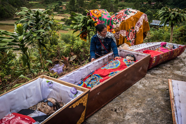 Roughly 50 bodies are being moved from Balle graveyard to a new mausoleum. As soon as the traditional coffins are dragged out of the tomb, the relatives put on surgical masks and attend to their loved ones. (Photo by Claudio Sieber Photography/The Guardian)