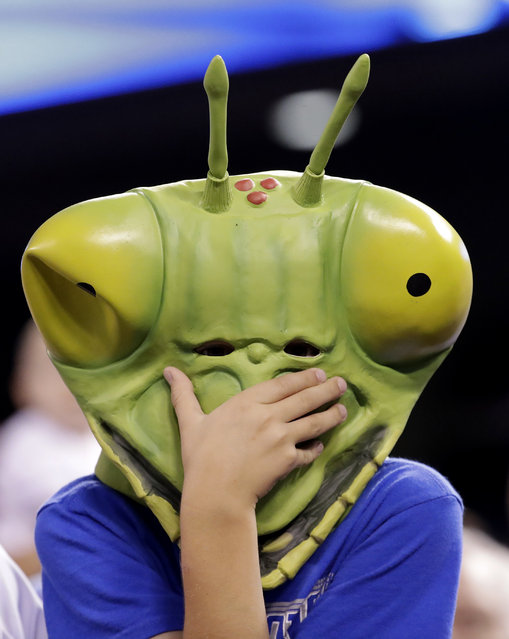 A fan wears an insect mask while watching the sixth inning of a baseball game between the Kansas City Royals and the Detroit Tigers, Saturday, September 3, 2016, in Kansas City, Mo. (Photo by Charlie Riedel/AP Photo)