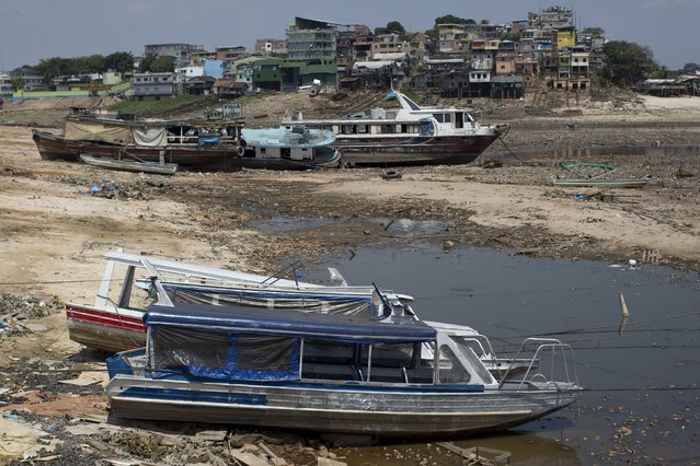 Boats lie on the bottom of a branch of the Rio Negro, a tributary to the Amazon river, in the city of Manaus, Brazil, October 15, 2015. A severe drought has pushed river levels in Brazil's Amazon region to record lows, leaving isolated communities dependent on emergency aid and thousands of boats stranded on parched riverbeds. (Photo by Bruno Kelly/Reuters)
