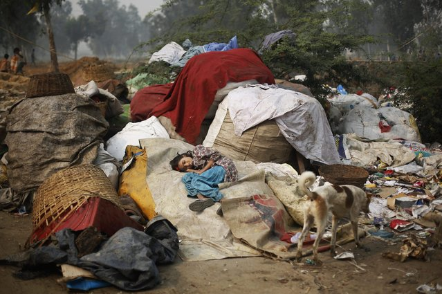 In this November 11, 2014 photo, Murshida, 12, daughter of rag picker Marjina, lies on a sack of trash after she fell ill, outside their rented shanty on the outskirts of New Delhi, India. (Photo by Altaf Qadri/AP Photo)