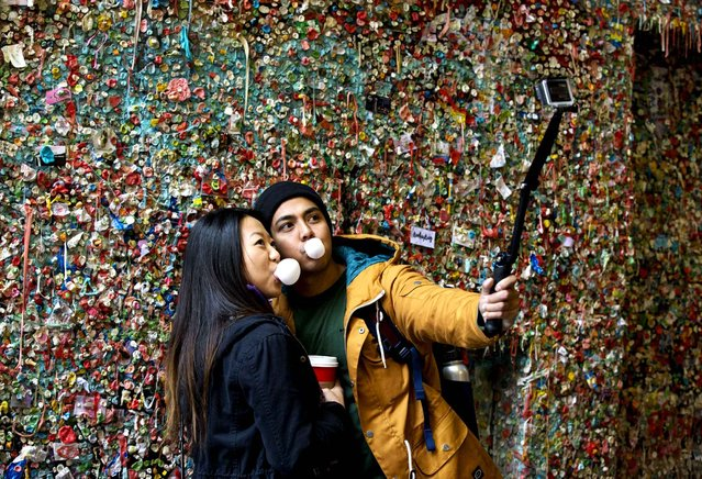Jessica Wang, left, and Michael Teylan, both of Los Angeles, take at photo at Seattle's famous gum wall at Pike Place Market, Monday, November 9, 2015. On Tuesday, a steam-cleaning process to remove all of the gum is from the walls is scheduled to begin, the first full cleaning the quirky tourist attraction has received in 20 years. (Photo by Ted S. Warren/AP Photo)