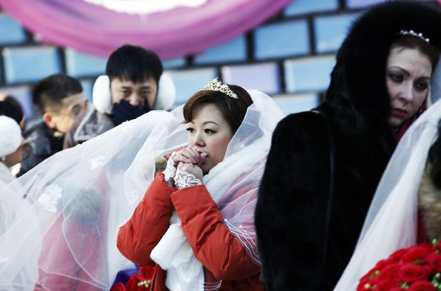 A bride reacts in the cold winter weather as she waits for the start of a group wedding ceremony which was held as part of the Harbin International Ice and Snow Festival in the northern city of Harbin, Heilongjiang province January 6, 2015. (Photo by Kim Kyung-Hoon/Reuters)