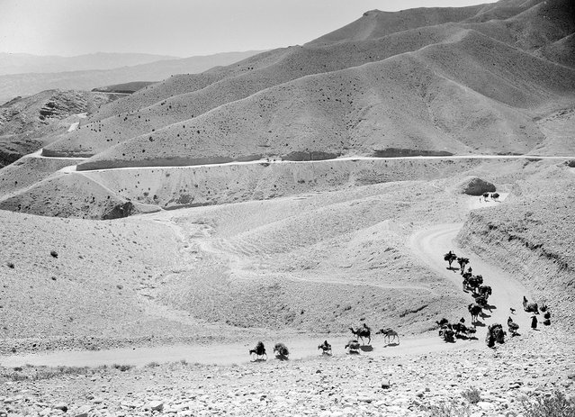 A caravan of mules and camels cross the high, winding trails of the Lataband Pass in Afghanistan on the way to Kabul, on October 8, 1949. (Photo by Max Desfor/AP Photo via The Atlantic)