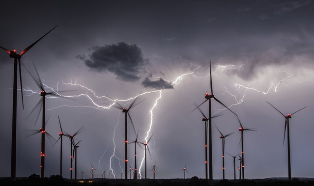 Lightnings flash over windmills of the Odervorland wind energy park near Sieversdorf, eastern Germany, on August 1, 2017. (Photo by Patrick Pleul/AFP Photo/DPA)