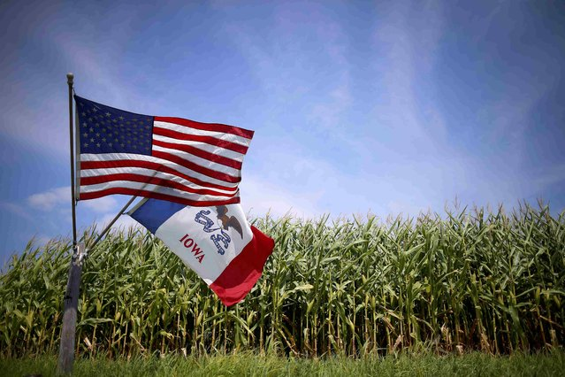 A U.S. and Iowa state flags are seen next to a corn field in Grand Mound, Iowa, United States, August 16, 2015. Iowa will be the first state to hold its primary, with both Democratic and Republican events being held February 1, 2016. (Photo by Jim Young/Reuters)