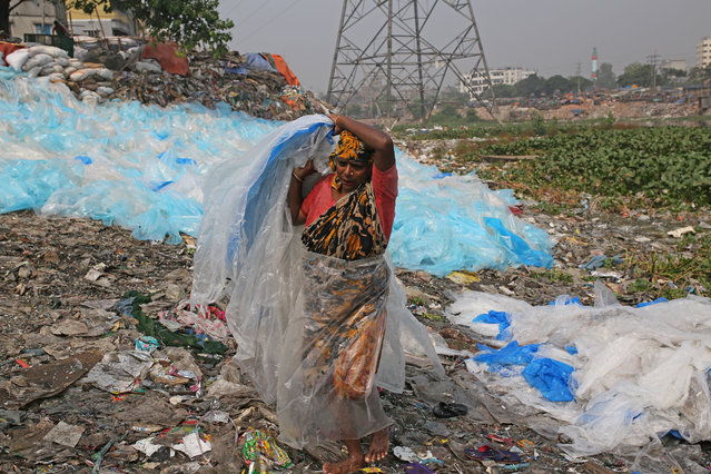 A woman dries plastic bags ready for recycling on the bank of Buriganga River, one of the most polluted rivers in the country due to extensive dumping of industrial and human waste in Dhaka, Bangladesh on November 7, 2018. (Photo by  Rehman Asad/Barcroft Images)