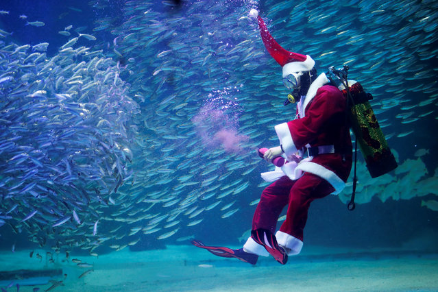 A diver dressed as Santa Claus swims with sardines during a promotional event for Christmas in Seoul, South Korea, December 7, 2018. (Photo by Kim Hong-Ji/Reuters)