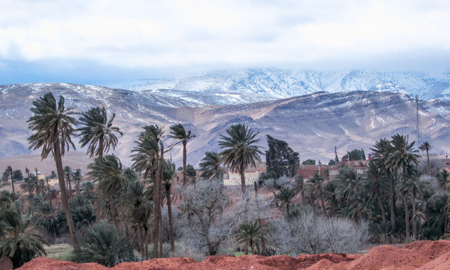 Record snowfall in the Sahara Desert near the town of Ain Sefra in Algeria on January 21, 2017. (Photo by Geoff Robinson/Rex Features/Shutterstock)