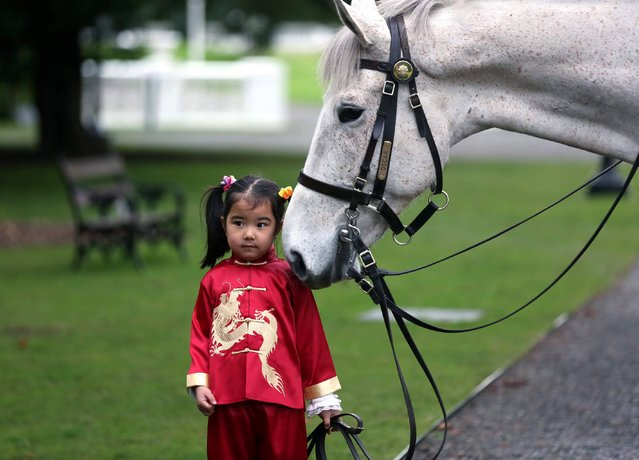 Pictured at the launch of the Dublin Chinese New Year Festival, at the Garda Mounted Unit Stables, Phoenix Park was Ze Jin Qu (age 4) with Oscar the horse. One of Dublin City Council's biggest annual celebrations, the Festival,  which this year celebrates the Year of the Horse, runs from 31st January – 14th February at venues around the city. (Photo by  Jason Clarke Photography)