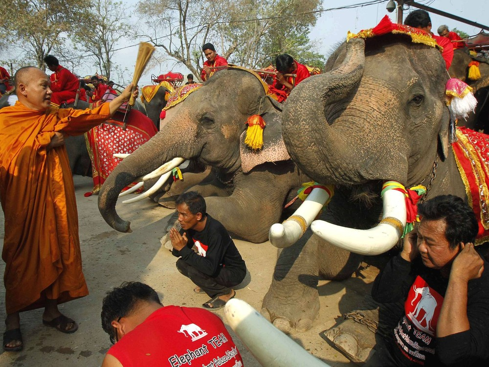National Elephant Day in Thailand