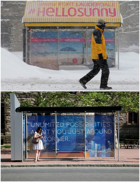 A combination picture shows a pedestrian walking past a bus stop during a winter blizzard in Boston, Massachusetts, United States February 15, 2015 (top), and a commuter waiting at the same bus stop June 10, 2015. (Photo by Brian Snyder/Reuters)