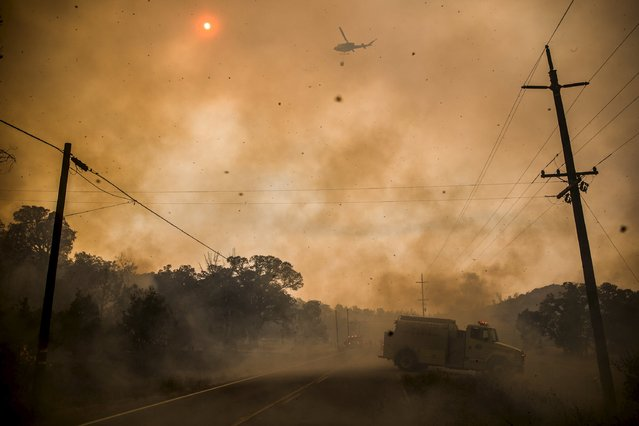 Firefighters on the ground and in the air scramble to battle spot fires at the Rocky Fire in Lake County, California July 30, 2015. (Photo by Max Whittaker/Reuters)
