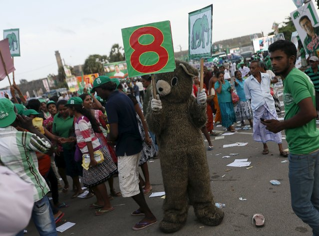 A supporter of Sri Lanka's Prime Minister Ranil Wickramasinghe wearing a bear costume holds up political placards during a United National party election campaign rally in Galle August 14, 2015. Sri Lanka's general election will be held on 17th August. (Photo by Dinuka Liyanawatte/Reuters)