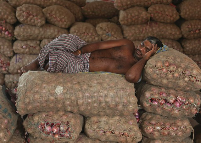 An Indian worker rests on bags of onions at a wholesale market, August 25, 2015, in Hyderabad, India. (Photo by Mahesh Kuma/AP Photo)