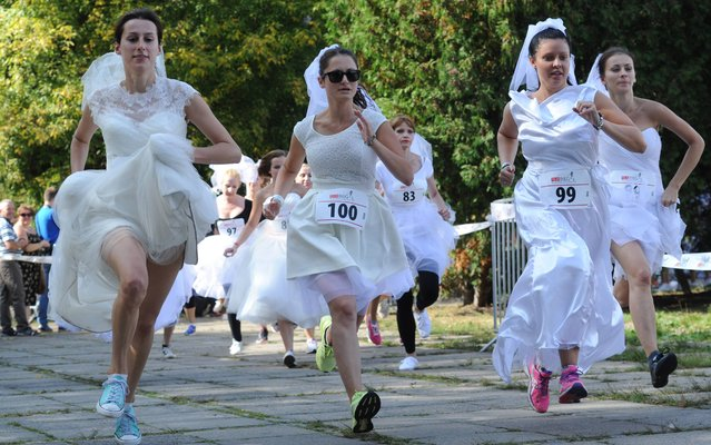 Women in wedding dresses compete in a 500 metres charity run in Warsaw, Poland, Sunday, September 14, 2014. (Photo by Alik Keplicz/AP Photo)