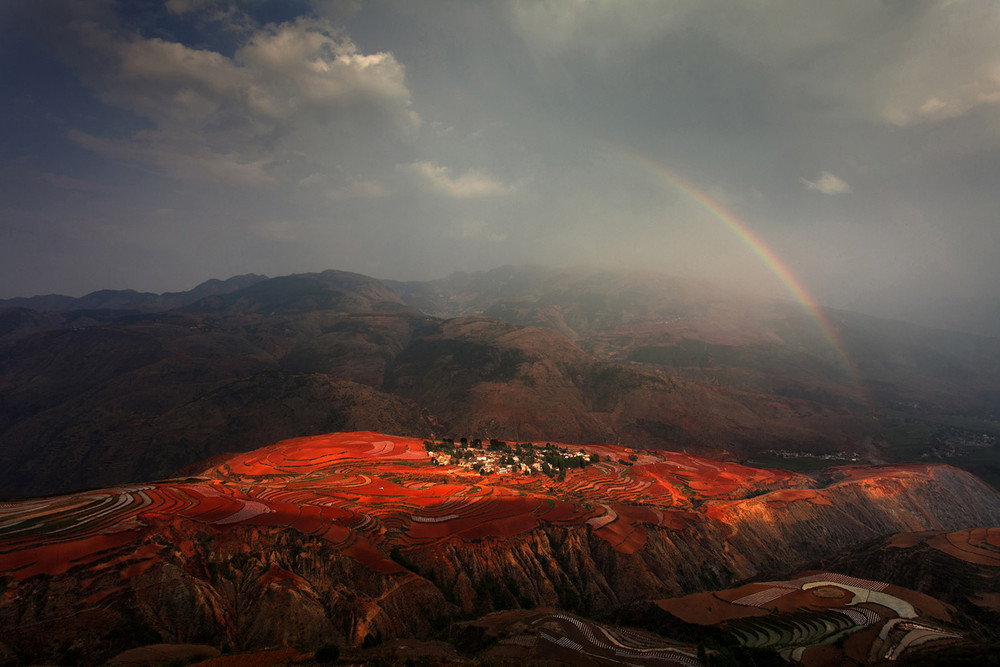 National Geographic Photo Contest 2012. Part II