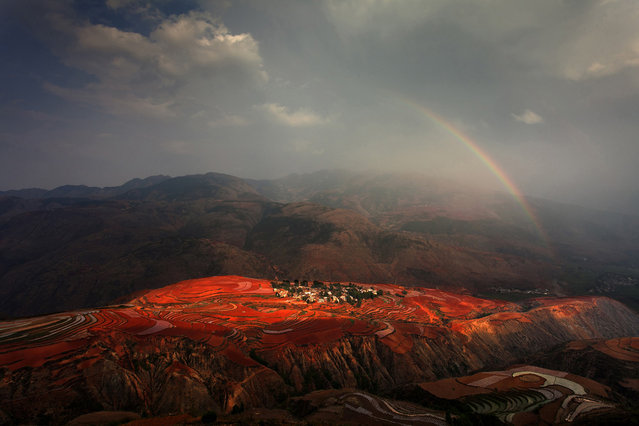 """Red Land: Sunset Cloud Village is one of the most picturesque places in Red Land, China. As its name indicates, it's best to see before sunset. The reddish brown soil turns redder after rainfall and after farmers plow the land"". (Photo and comment by Peng Jiang/National Geographic Photo Contest via The Atlantic)"