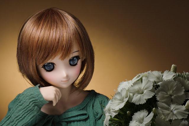 Dolls. One week, One flower No.11 -Dianthus-. (Suzuhico)