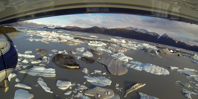 Icebergs are seen floating in Harlequin Lake near Yakutat, in southeastern Alaska, October 7, 2014. (Photo by Bob Strong/Reuters)