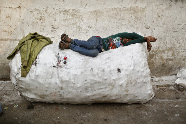 A rag picker takes a nap on a sack filled with used plastic bottles, at the side of a road in New Delhi December 8, 2013. (Photo by Anindito Mukherjee/Reuters)