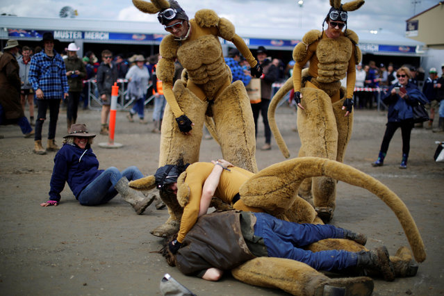 One of several men dressed as a kangaroo is tackled by a drunk man at the Deni Ute Muster in Deniliquin, New South Wales, Australia, September 30, 2016. (Photo by Jason Reed/Reuters)