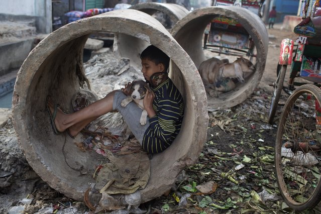 A Bangladeshi boy holds a dog and sits inside a concrete pipe by the side of a road, on a cold winter morning in Dhaka, Bangladesh, Friday, December 19, 2014. A 2013 World Bank report said there was a continuous decline in the number of poor people in Bangladesh, one of the most densely populated countries in the world, from nearly 63 million in 2000, to 55 million in 2005, and then 47 million in 2010. (Photo by A. M. Ahad/AP Photo)