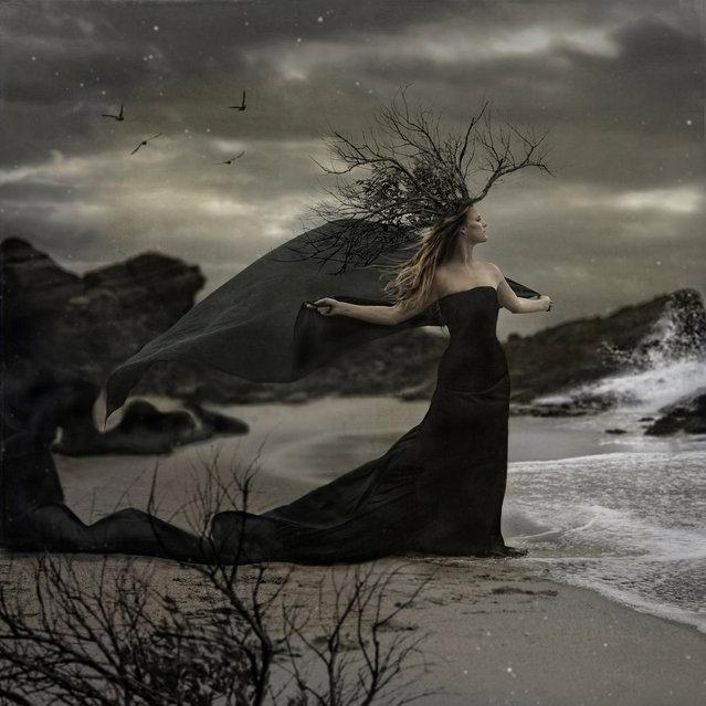 """Under Her Watchful Gaze"". (Photo by Trini61)"