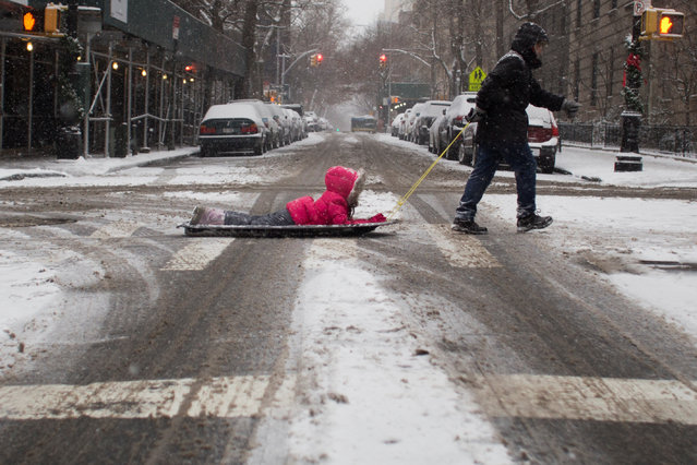 A man pulls a child on a sled on a snowy day in Brooklyn, New York City, U.S., January 7, 2017. (Photo by Alex Wroblewski/Reuters)