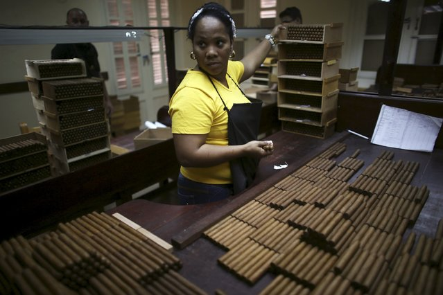 Jordanka Mendez, 37, works at the quality control room at the Corona Tobacco factory in Havana, March 3, 2016. (Photo by Alexandre Meneghini/Reuters)