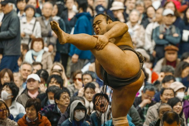 "A sumo wrestler performs a ritual stomping movement before a bout at the ""Honozumo"" ceremonial sumo tournament at the Yasukuni Shrine in Tokyo April 3, 2015. (Photo by Thomas Peter/Reuters)"