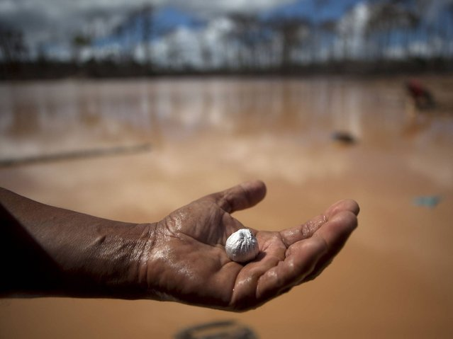 A miner holds an amalgam of mercury and gold he mined after working a 28-hour shift at an illegal gold mining process in La Pampa, in Peru's Madre de Dios region. (Photo by Rodrigo Abd/AP Photo)