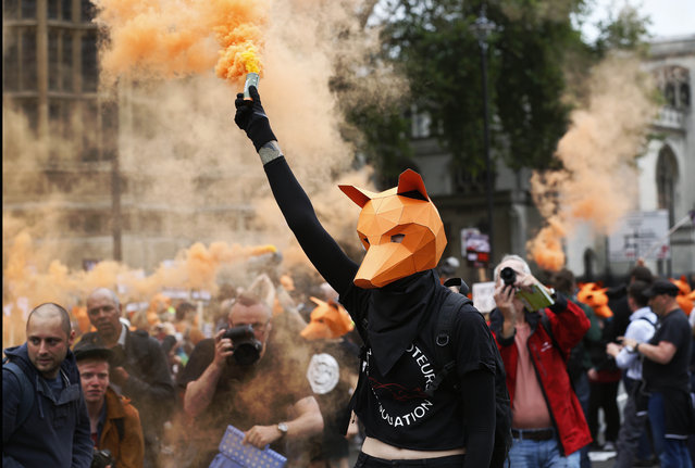 Protestors dressed as foxes demonstrate in front of the Houses of Parliament in London, Tuesday, July 14, 2015 urging policymakers to keep Britain humane by keeping the Hunting Act intact. The government has called off the scheduled vote for Wednesday on fox hunting. (Photo by Frank Augstein/AP Photo)