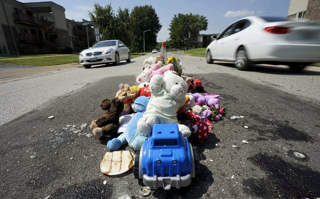 A collection of stuffed animals sits on the road in a memorial at the site where Michael Brown was killed nearly a year ago in Ferguson, Missouri August 7, 2015. One year after the police shooting of an unarmed black teen thrust Ferguson, into the national spotlight, the St. Louis suburb is bracing for a weekend of protests over continued complaints of police violence. (Photo by Rick Wilking/Reuters)
