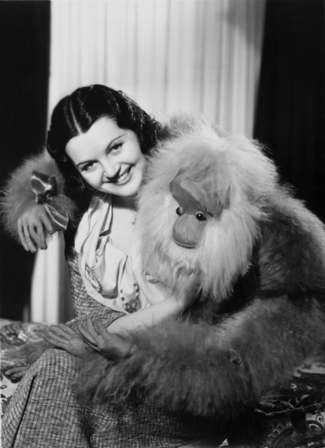 Toni Chase a brunette beauty appearing in 'New York Midnight Follies' 1934 at the Dorchester is 'embraced' by a large orang-utan cuddly toy