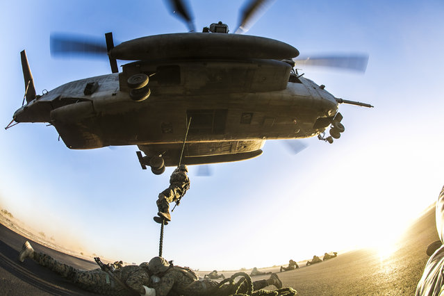 U.S. Marines attending the infantry officers course conduct fast rope training in preparation for Talon Reach during Weapons and Tactics Instructor Course (WTI 2-15) at Auxiliary Airfield 2 near Yuma, AZ., March 26, 2015. WTI is a seven-week event hosted by Marine Aviation Weapons and Tactics Squadron One (MAWTS-1) cadre. MAWTS-1 provides standardized tactical training and certification of unit instructor qualifications to support Marine aviation Training and Readiness and assists in developing and employing aviation weapons and tactics. (U.S. Marine Corps photo by Lance Cpl. Jodson B. Graves 2d MAW Combat Camera/Released)